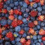blueberry, raspberry