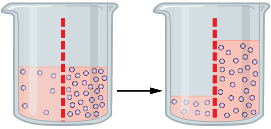 Osmosis semi-permeable membrane