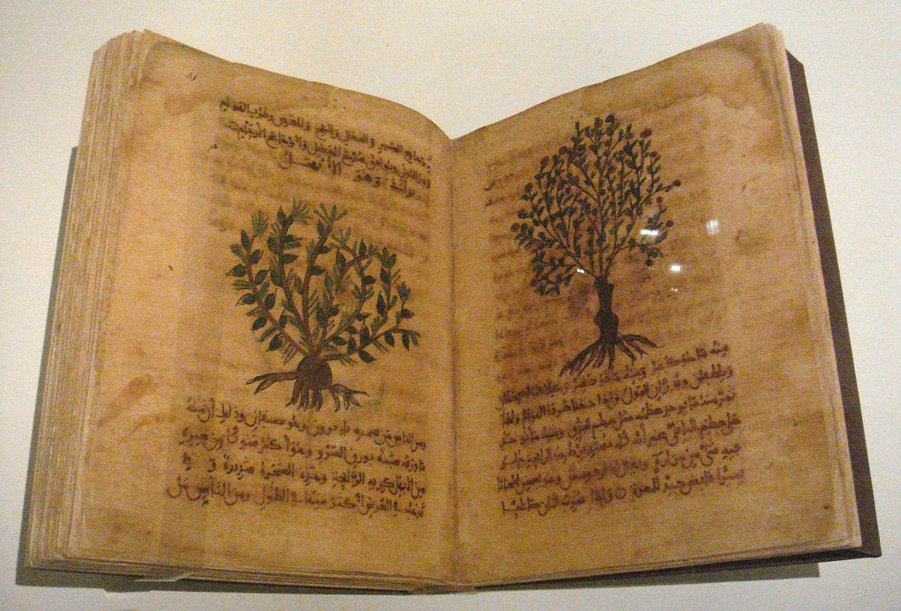 Abu Hanifa Dinawari botany text photo