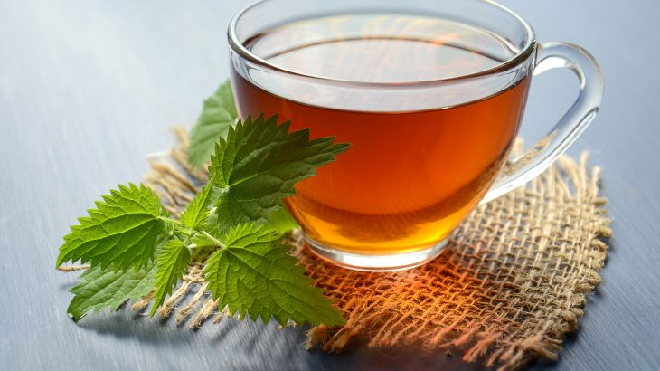 Nettle tea can be easily brewed from fresh or dried leaves.