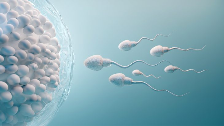 """In a new study from the University of Bristol, scientists have made an unexpected discovery in how human sperm """"swim."""""""