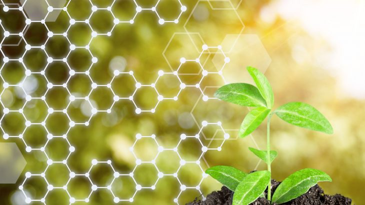Plants have the remarkable ability to protect themselves against pathogens