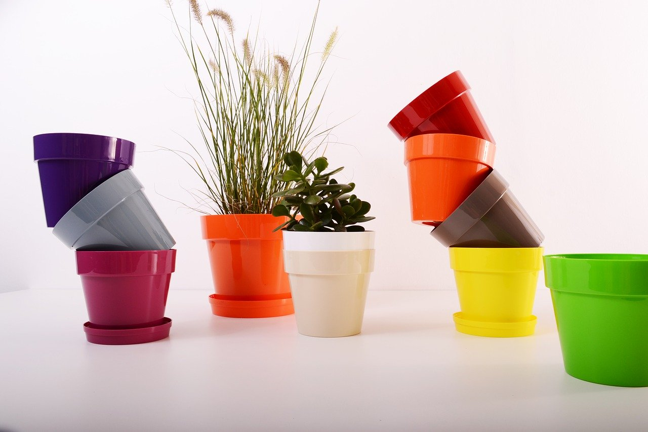 plastic plant pot houseplants