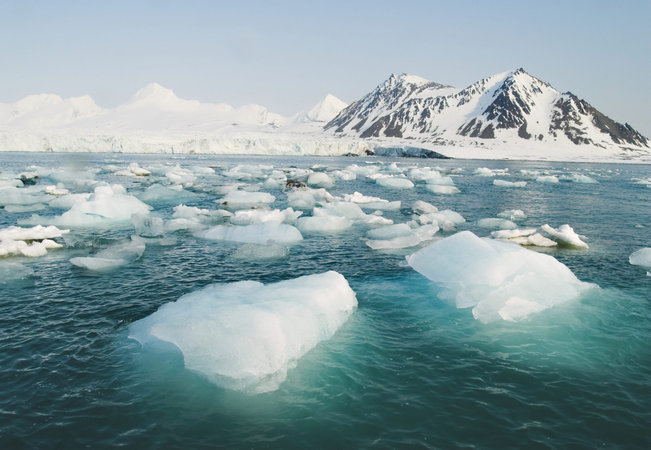 The Arctic may be completely free of sea ice in 15 years • Earth.com - Earth.com