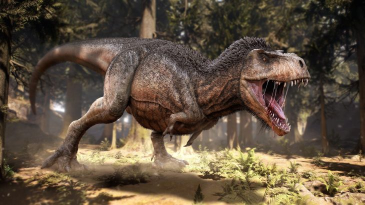 The experts have determined that flight potentially evolved three different times: twice in feathered dinosaurs and once early birds.