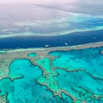 Today's Video of the Day from the Australian Institute of Marine Science describes how the Great Barrier Reef could be protected from the destruction of global warming.