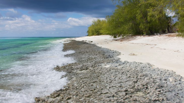 According to the research, to remove all of the plastic waste from the Aldabra Atoll, it would cost $4.68 million and require 18,000 hours of labor.