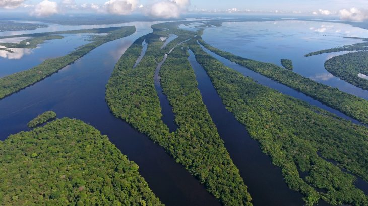 A new study from AAAS reveals that in the Brazilian Amazon, degradation has become more destructive than deforestation.