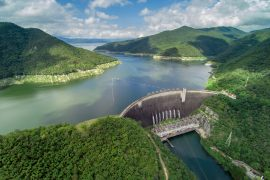 A new study from Forschungsverbund Berlin describes how dams are compounding the impacts of climate change on river fish.