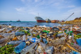 The experts measured the extent of plastic pollution washed up on coastlines around the world, and estimated that the manpower and resources needed to keep this amount of trash under control is barely even feasible.