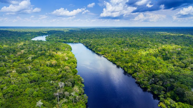 A study from the University of Copenhagen describes a new early-warning method for predicting droughts in the Amazon rainforest up to 18 months in advance.