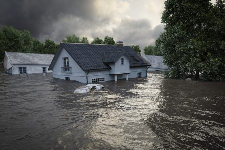 Today's Video of the Day from the National Science Foundation describes Floodbot, new technology that will serve as an early warning system for flash floods.