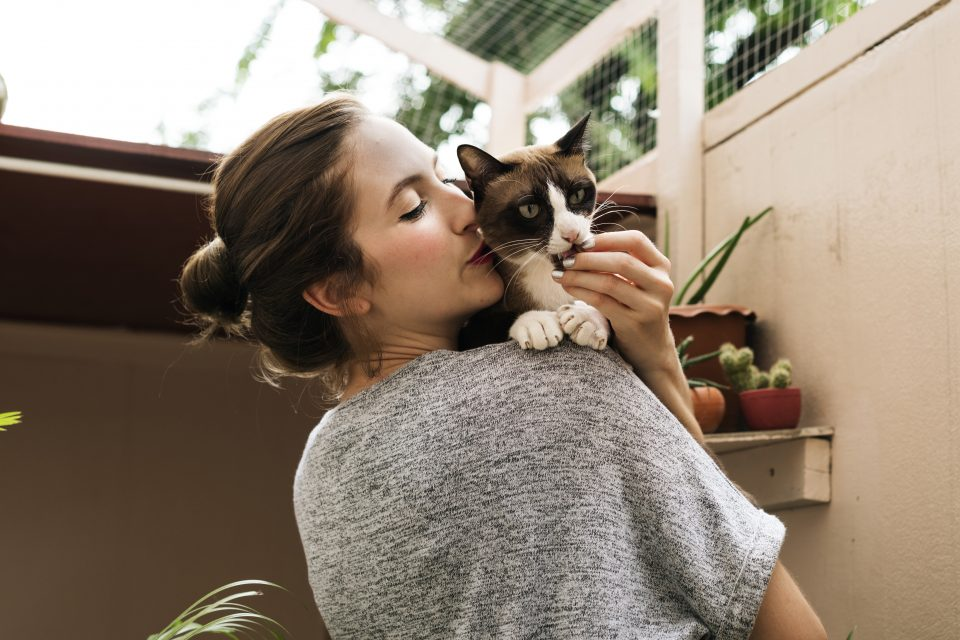 Among thousands of survey respondents who were pet owners, 90 percent said their pet helped them cope emotionally with the lockdown, while 96 percent said their pet helped keep them stay active and fit.