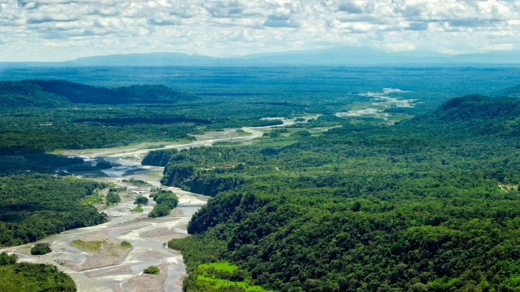 Shifting the focus of conservation efforts in the Amazon from terrestrial species to freshwater species would produce up to six times the benefits, according to a new study from the Lancaster University and the University of São Paulo
