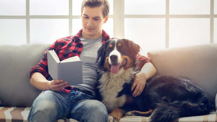 A team of researchers at the Eötvös Loránd University (ELTE) has demonstrated that dogs are sensitive to the preferences of humans, but usually follow their own desires