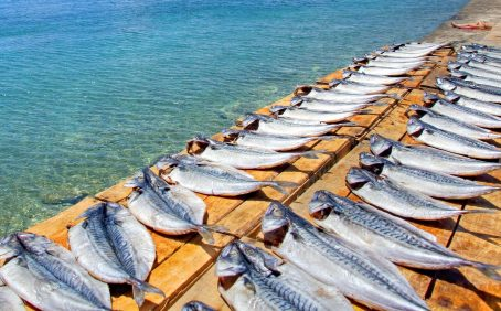 The seafood industry has been hit hard by the COVID-19 pandemic, with exports dropping by up to 43 percent in 2020 compared to last year