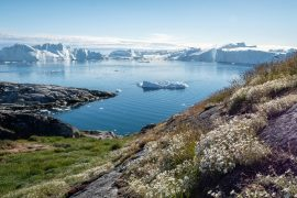 A new study from McGill University describes how changes in the Antarctic ice sheet are interconnected with melting ice sheets on the other side of the globe.