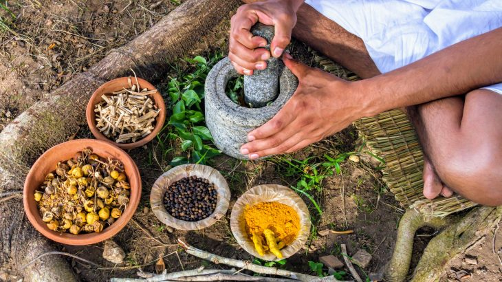 By gaining a better understanding of traditional Chinese medicine, conservationists will be more capable of protecting endangered animals like rhinos and tigers