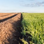 arable land importance