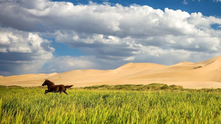 An abrupt shift in the climate over inner East Asia may lead to a tipping point that pushes Mongolia into a permanently dry and barren region.