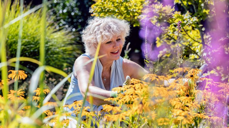 Light activity such as gardening or walking can protect mobility among aging adults without the need for intense exercise, according to a new study from UC San Diego