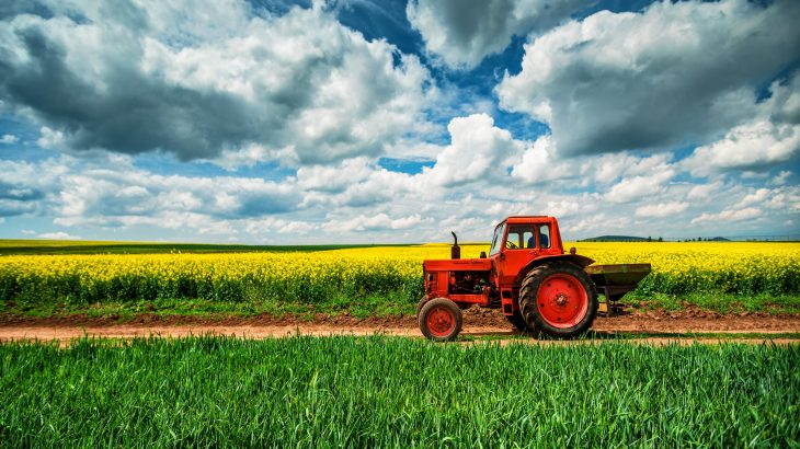 According to researchers, this is equivalent to completely losing the last seven years of growth in agricultural productivity.
