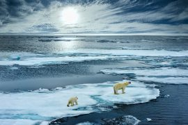 Abrupt changes in the climate system during the last ice age behaved like dominoes, with one event initiating a succession of events