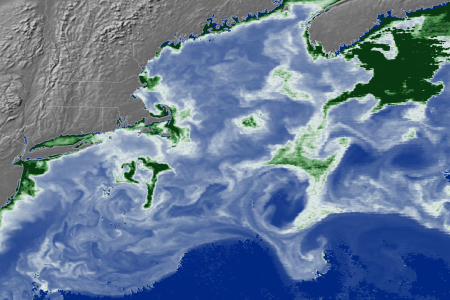 Today's Image of the Day from NASA Earth Observatory features a specially processed photo of the North Atlantic Ocean which reveals high concentrations of chlorophyll-a that are not visible to the naked eye.