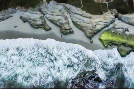 Today's Video of the Day from UC San Diego describes how pelicans seem to effortlessly glide along the crests of ocean waves close to shore.