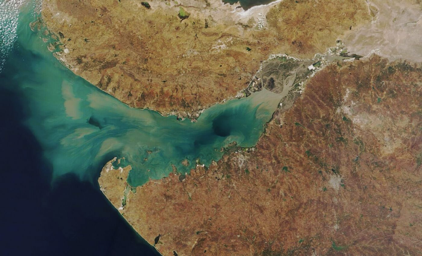 Today's Image of the Day from NASA Earth Observatory features the Gulf of Kutch, which is one of four major coral reef formation sites around India.