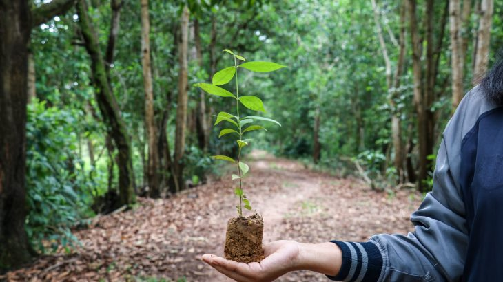 The world must honor its commitment to restore at least one billion degraded hectares of land in the next decade in order to address the triple threat of climate change
