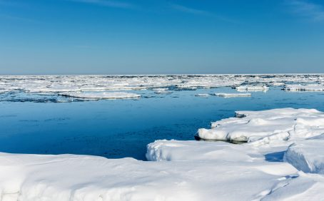 A recent study led by University College London suggests that sea ice in coastal regions of the Arctic is thinning at up to double the rate that was expected.
