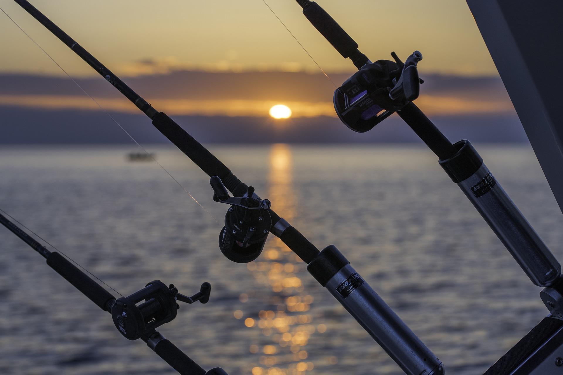 deep-sea fishing rods