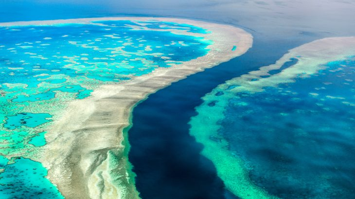 Scientists have found a way to delay ocean acidification around the Great Barrier Reef.