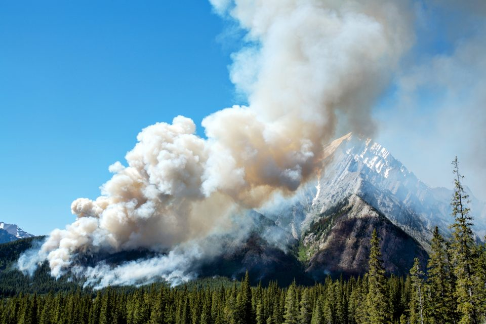 Fires are a normal and natural part of life in the Rocky Mountains and much of the interior western United States