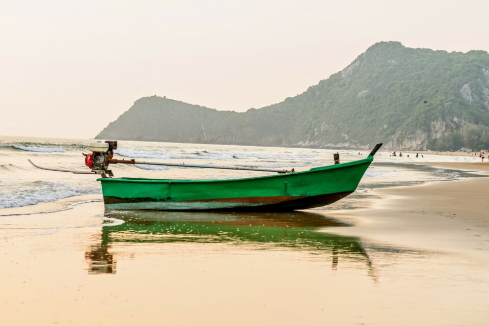 The study revealed that the increasing strain of climate change and overfishing will impact the availability of micronutrients that come from our oceans.