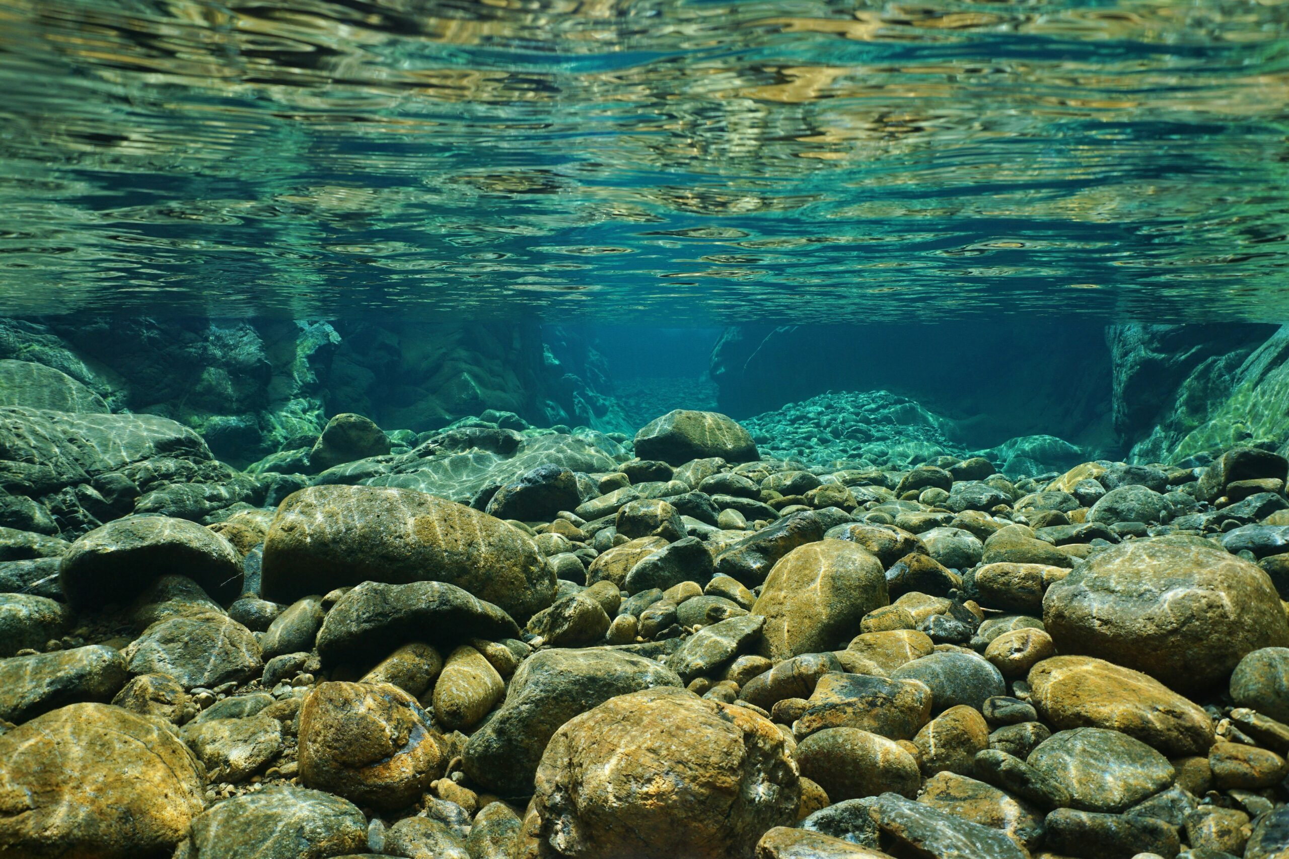 Water is not created or destroyed but instead cycled through a finite system.