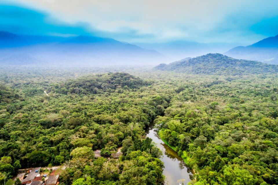 A new study from Bangor University has revealed that many regions of the Amazon that have experienced the most deforestation are the same areas that currently exhibit the lowest levels of forest recovery