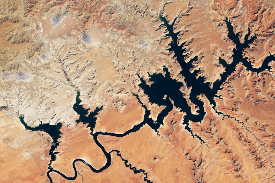 Today's Image of the Day from NASA Earth Observatory features Lake Powell, which straddles the border of southeastern Utah and northeastern Arizona.