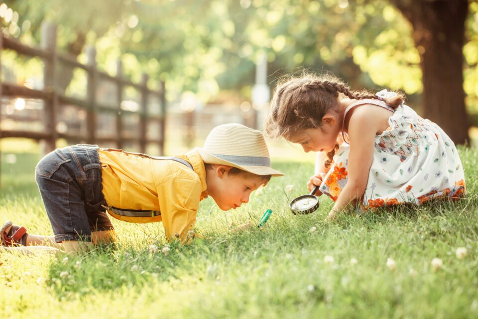 researchers at Washington State University and the University of Washington have confirmed that exposure to nature leads to a variety of health benefits in children