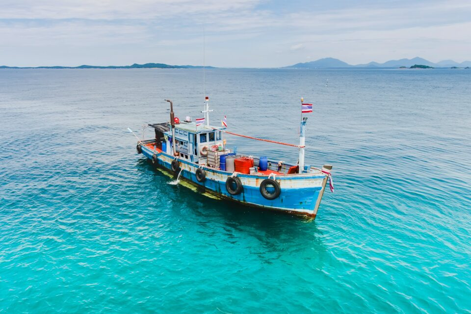 A new study published in the journal Science Advances found that rises in marine heatwaves will significantly amplify the impact of climate change on fish and fisheries