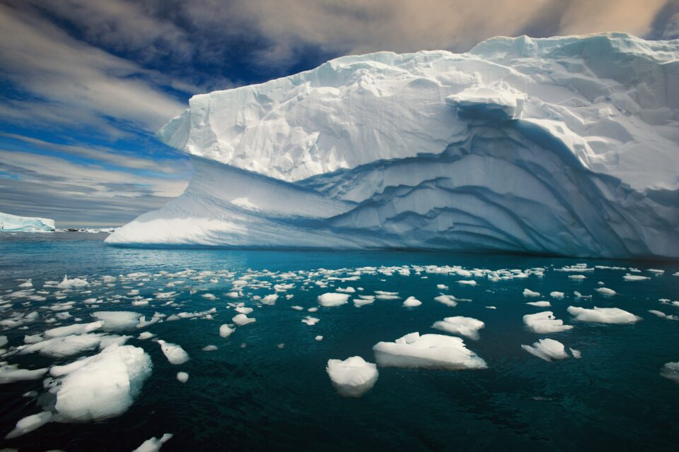 Climate change is causing sea ice in the Arctic Ocean to shrink increasingly fast: it now spans less than half the area it did in the 1980s